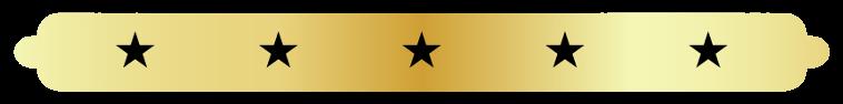 Majestic Trans 5 Star Limo Service